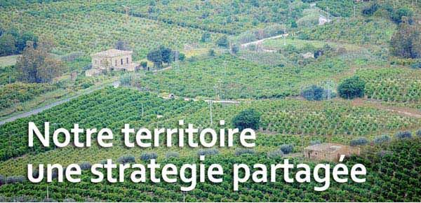 production d'agrumes de Sicile - le District gère toute la Sicile