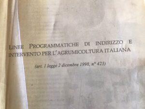 DAS, il documento vintage, le Linee Programmatiche per agrumicoltura (dicembre 1998)