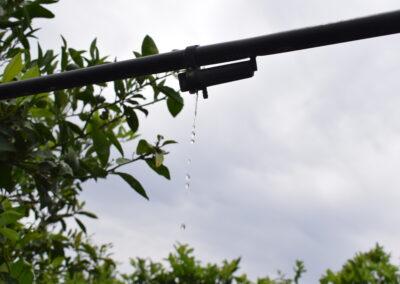 Impianto a pioggia - Zona Ribera