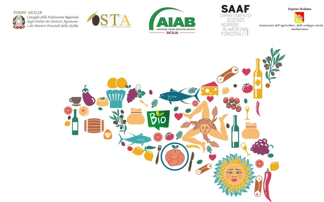 """Workshop """"I Distretti quale strumento di qualificazione e promozione territoriale e sociale: un focus sui distretti e bio-distretti siciliani"""""""