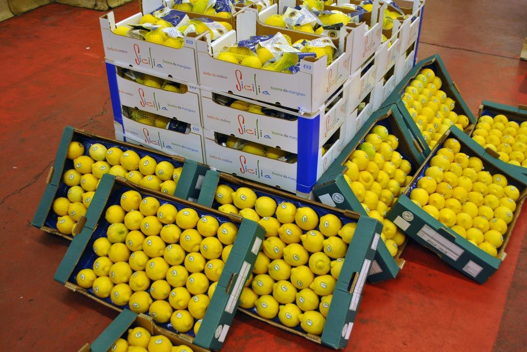 27/03/2015 - Workshop 'PGI and PDO Citrus' in Brescia