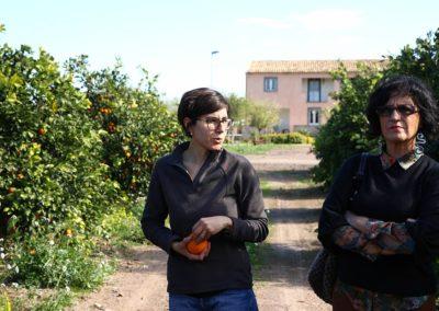 agrumi_Catania_29012018_06