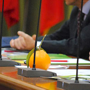 Firmato accordo Italia-Cina per export agrumi