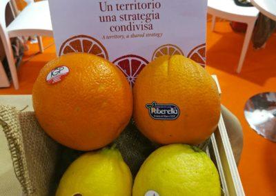 cibus05_arance_limoni_Sicilia