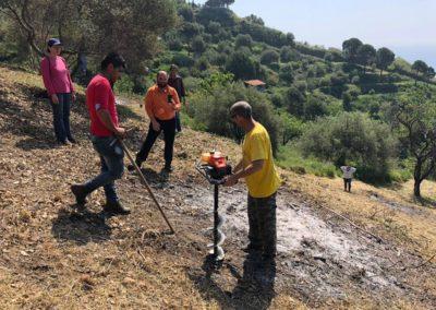 seminario_tecniche_coltivazione_agrumeto_08