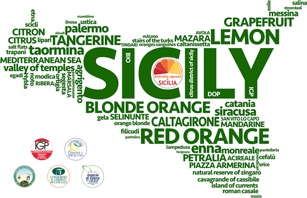 Citrus fruits and Sicilian territories