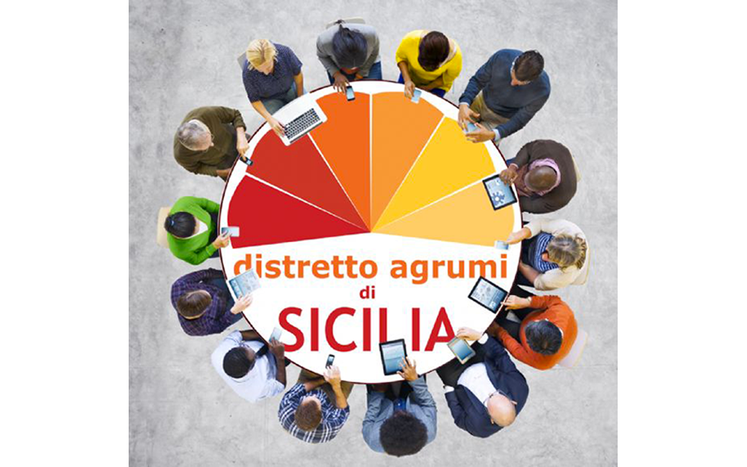 Convocazione Assemblea dei Soci e Partner del Distretto Agrumi di Sicilia