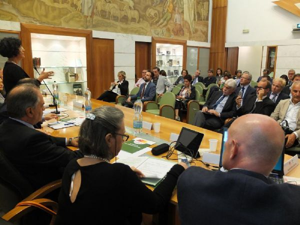 AGRICULTURE - Economy is restarting from citrus fruits in Sicily - Workshop in Rome
